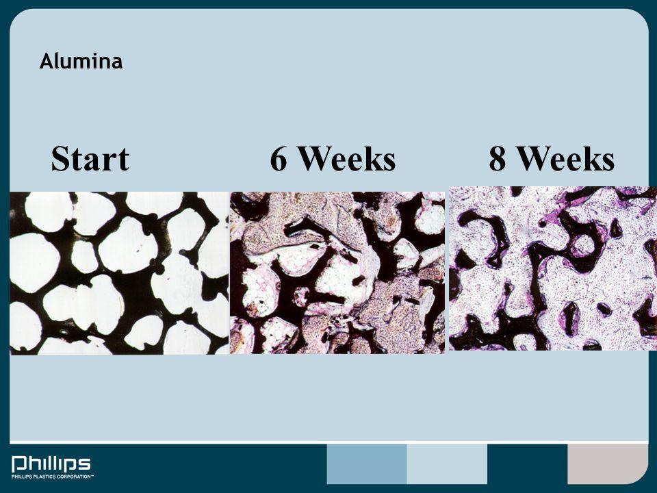 Alumina 6 Weeks8 WeeksStart