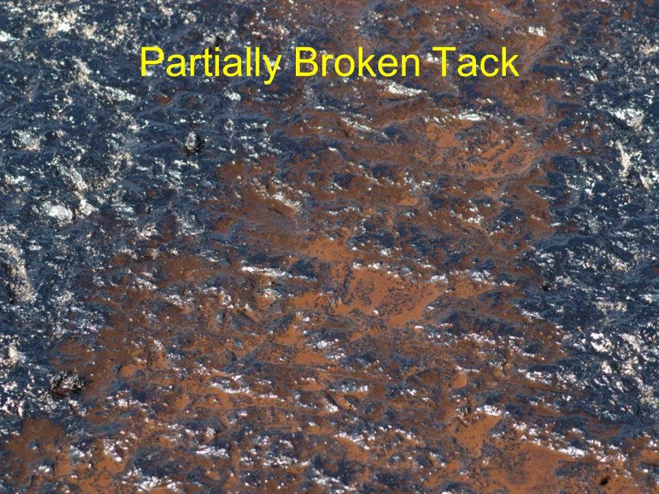 AMERICA RIDES ON US Partially Broken Tack
