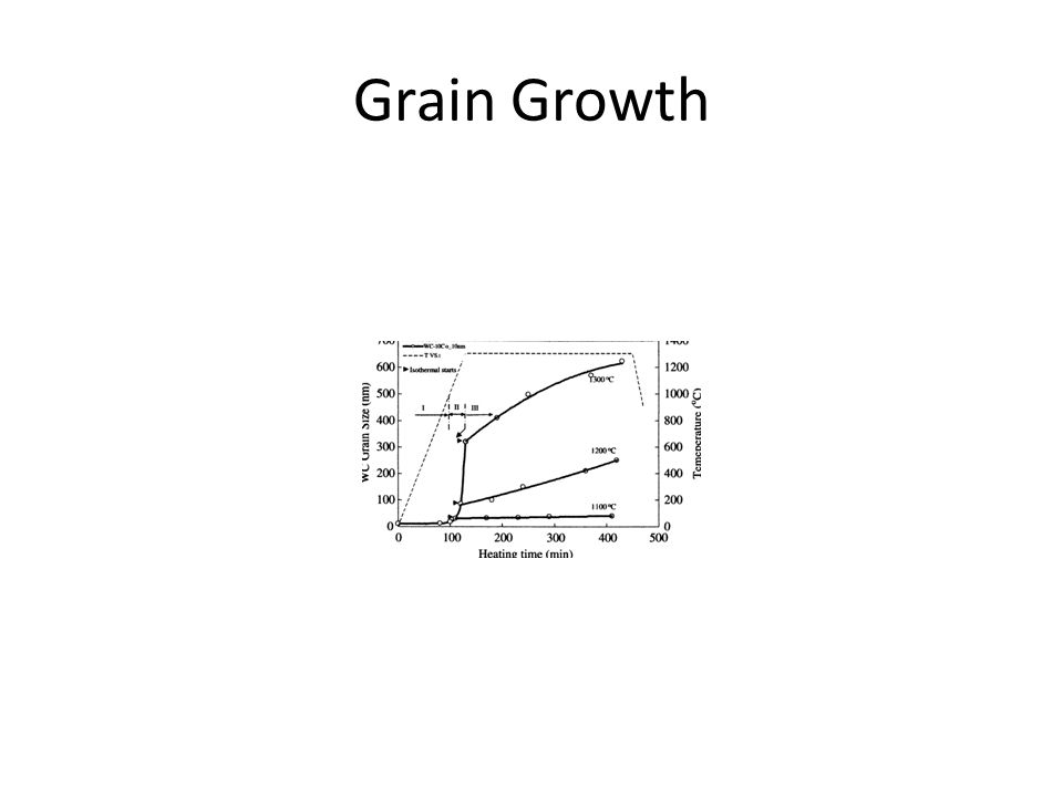 Grain Growth