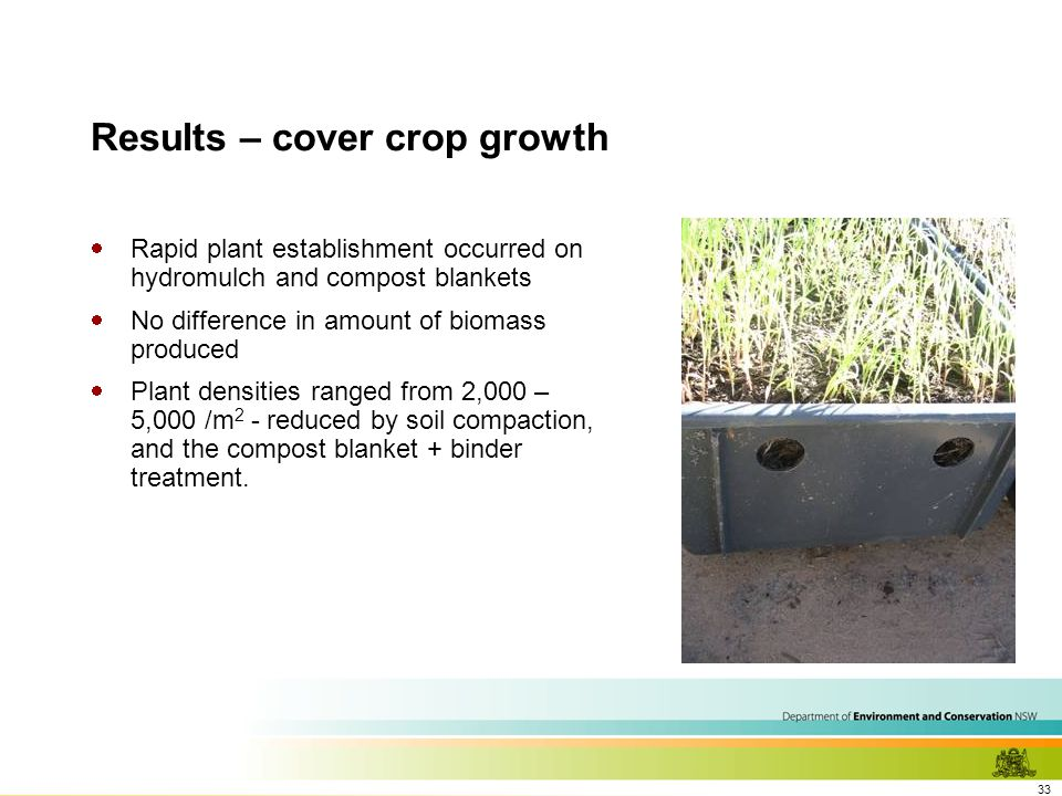 33 Results – cover crop growth  Rapid plant establishment occurred on hydromulch and compost blankets  No difference in amount of biomass produced  Plant densities ranged from 2,000 – 5,000 /m 2 - reduced by soil compaction, and the compost blanket + binder treatment.
