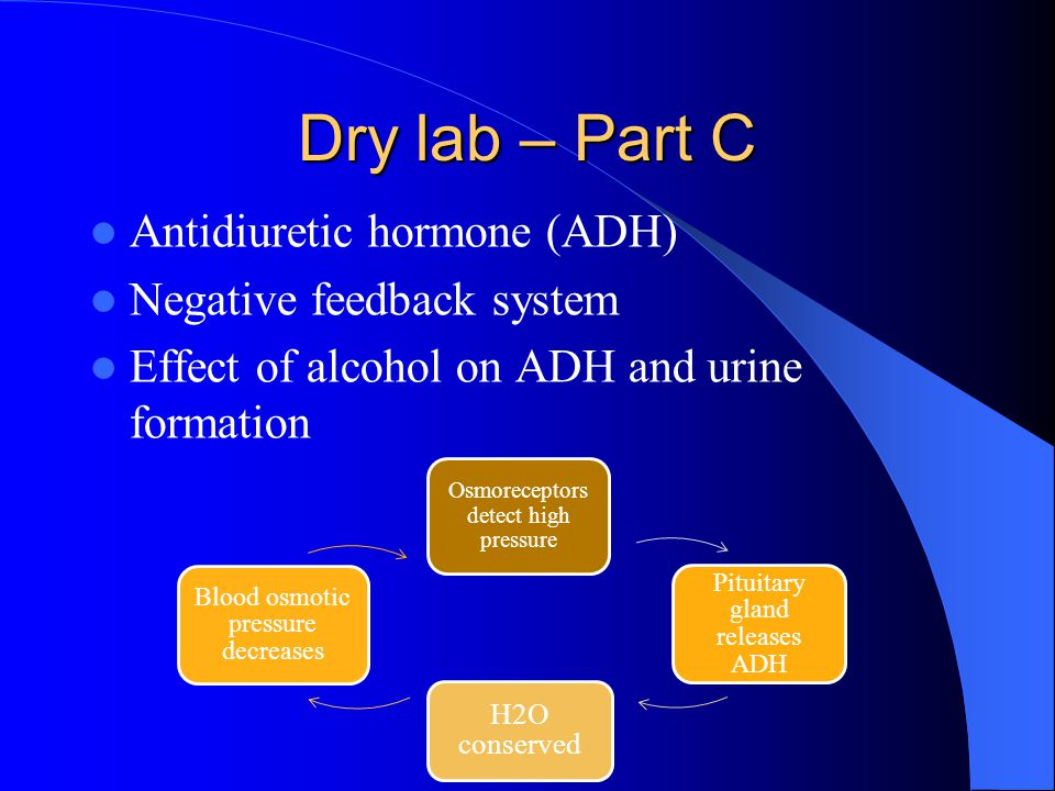 Dry lab – Part C Antidiuretic hormone (ADH) Negative feedback system Effect of alcohol on ADH and urine formation Osmoreceptors detect high pressure P