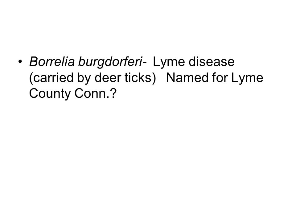 Borrelia burgdorferi- Lyme disease (carried by deer ticks) Named for Lyme County Conn.