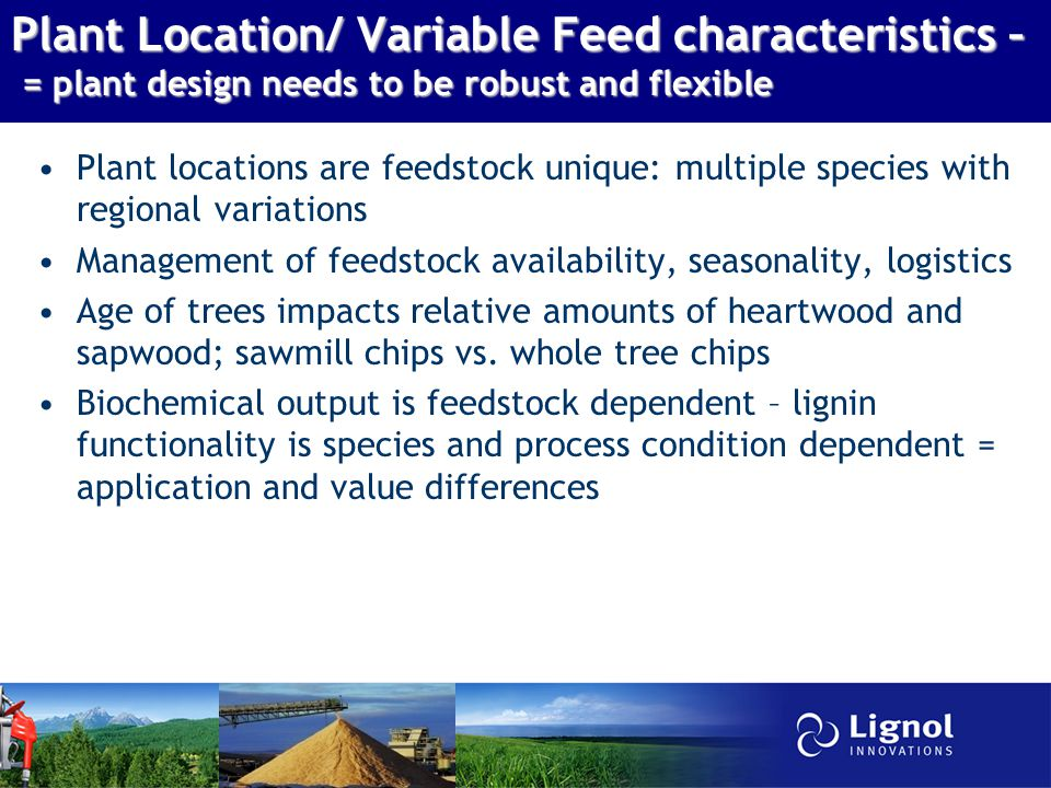 Plant Location/ Variable Feed characteristics – = plant design needs to be robust and flexible Plant locations are feedstock unique: multiple species with regional variations Management of feedstock availability, seasonality, logistics Age of trees impacts relative amounts of heartwood and sapwood; sawmill chips vs.