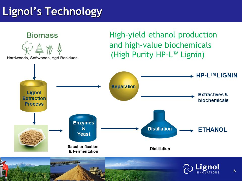 Lignol's Technology High-yield ethanol production and high-value biochemicals (High Purity HP-L™ Lignin) Lignol Extraction Process Separation Enzymes & Yeast Distillation Saccharification & Fermentation ETHANOL HP-L TM LIGNIN 6 Extractives & biochemicals