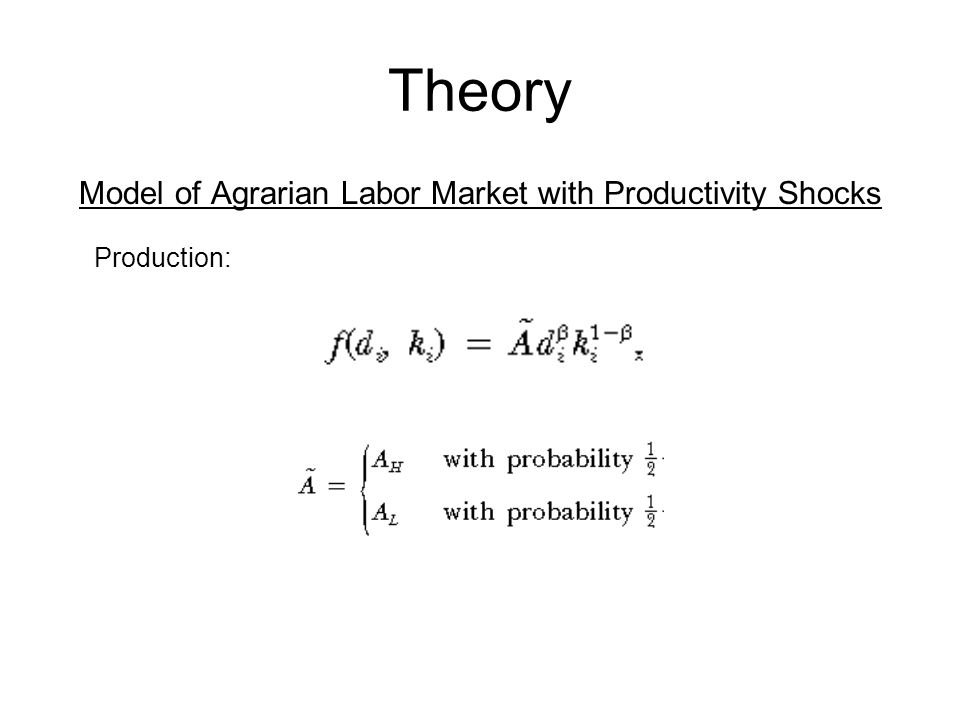 Theory Model of Agrarian Labor Market with Productivity Shocks Production: