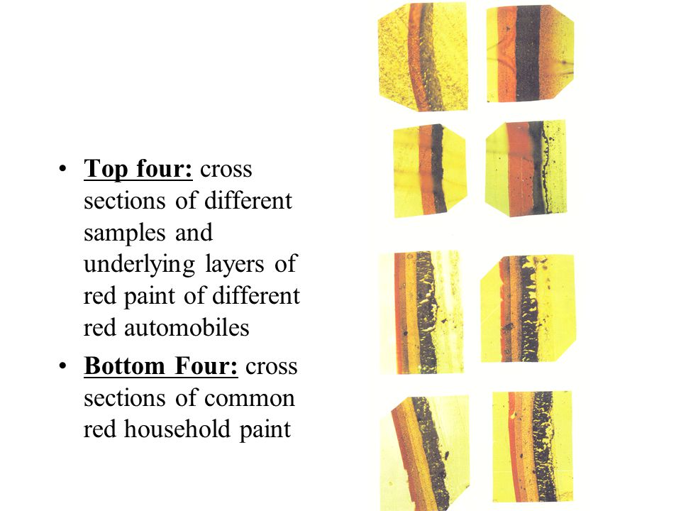 Top four: cross sections of different samples and underlying layers of red paint of different red automobiles Bottom Four: cross sections of common red household paint