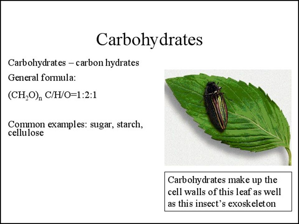 Fructans are probably the most abundant storage carbohydrate in plants next to starch and sucrose.