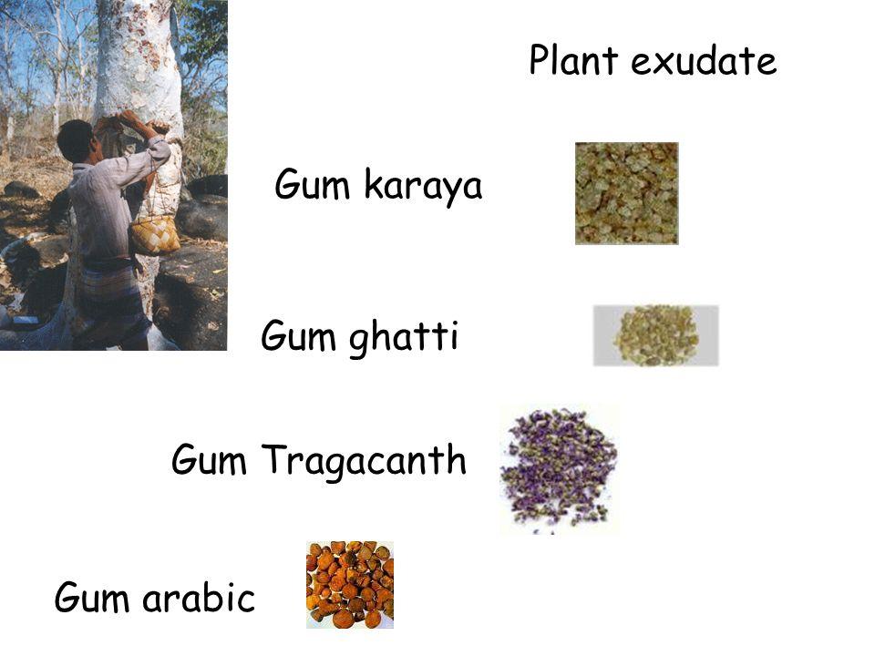 Plant exudate Gum karaya Gum ghatti Gum Tragacanth Gum arabic