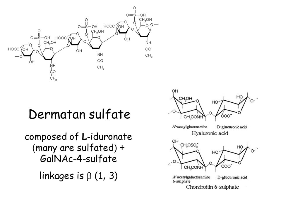 composed of L-iduronate (many are sulfated) + GalNAc-4-sulfate linkages is  (1, 3) Dermatan sulfate