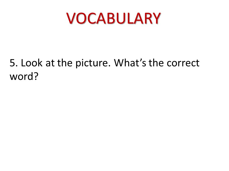 VOCABULARY 5. Look at the picture. What's the correct word