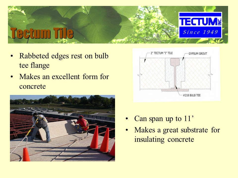 Tectum Tile Rabbeted edges rest on bulb tee flange Makes an excellent form for concrete Can span up to 11' Makes a great substrate for insulating concrete