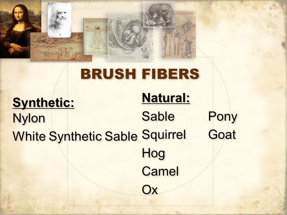 BRUSH FIBERS Natural: Sable Squirrel Hog Camel Ox Pony Goat Synthetic: Nylon White Synthetic Sable Synthetic: Nylon White Synthetic Sable