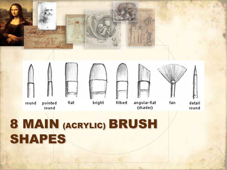 8 MAIN (ACRYLIC) BRUSH SHAPES