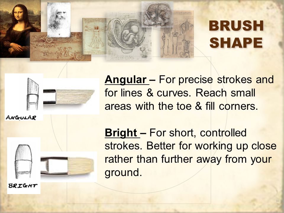BRUSH SHAPE Angular – For precise strokes and for lines & curves.