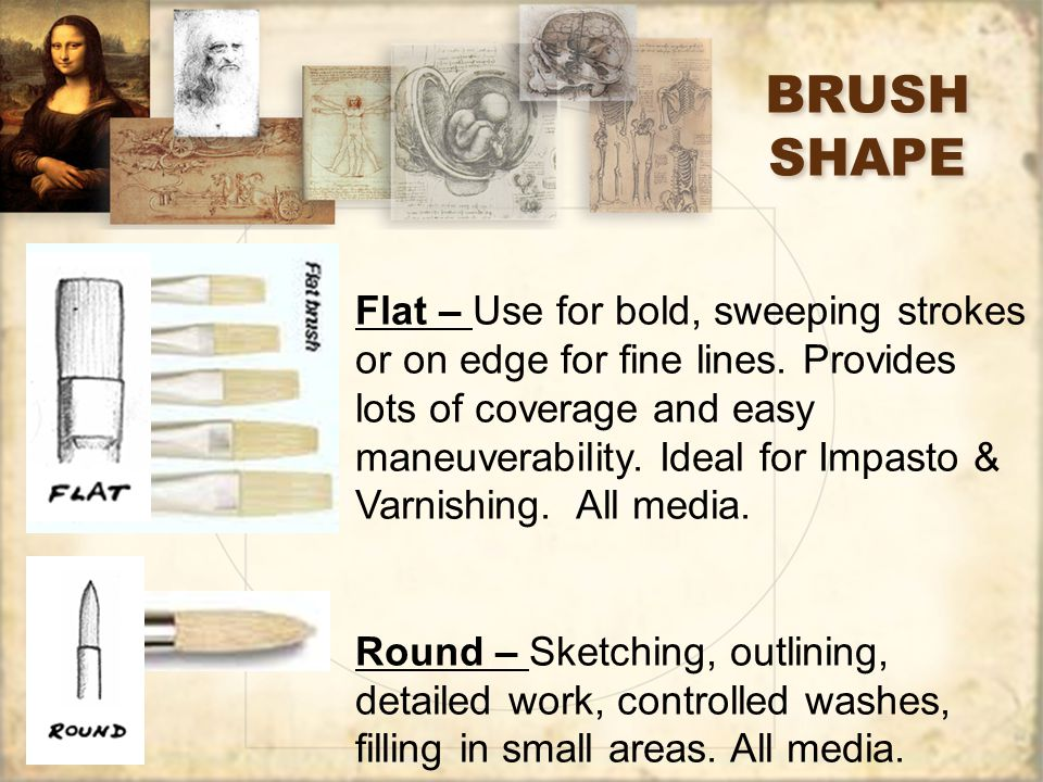 BRUSH SHAPE Flat – Use for bold, sweeping strokes or on edge for fine lines.