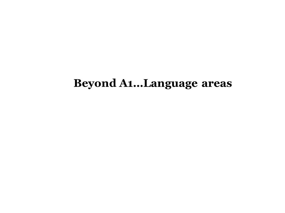 Beyond A1…Language areas