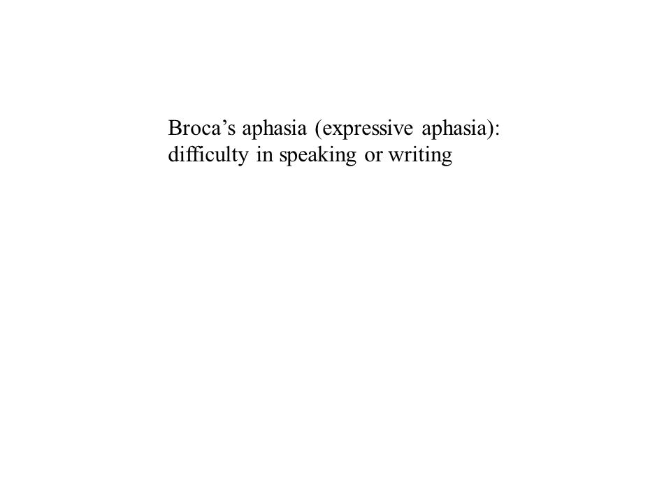 Broca's aphasia (expressive aphasia): difficulty in speaking or writing Wernicke's aphasia (receptive aphasia): difficulty in understanding speech or written material