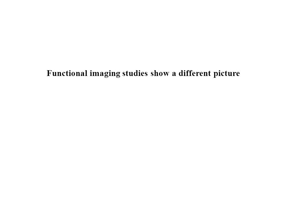 Functional imaging studies show a different picture