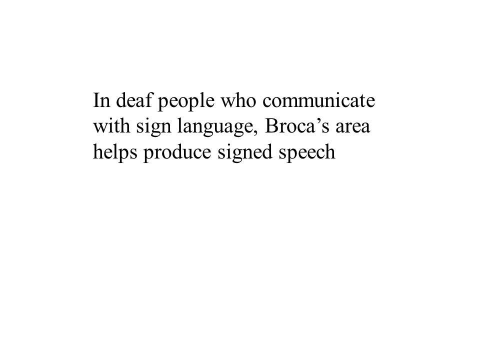 In deaf people who communicate with sign language, Broca's area helps produce signed speech