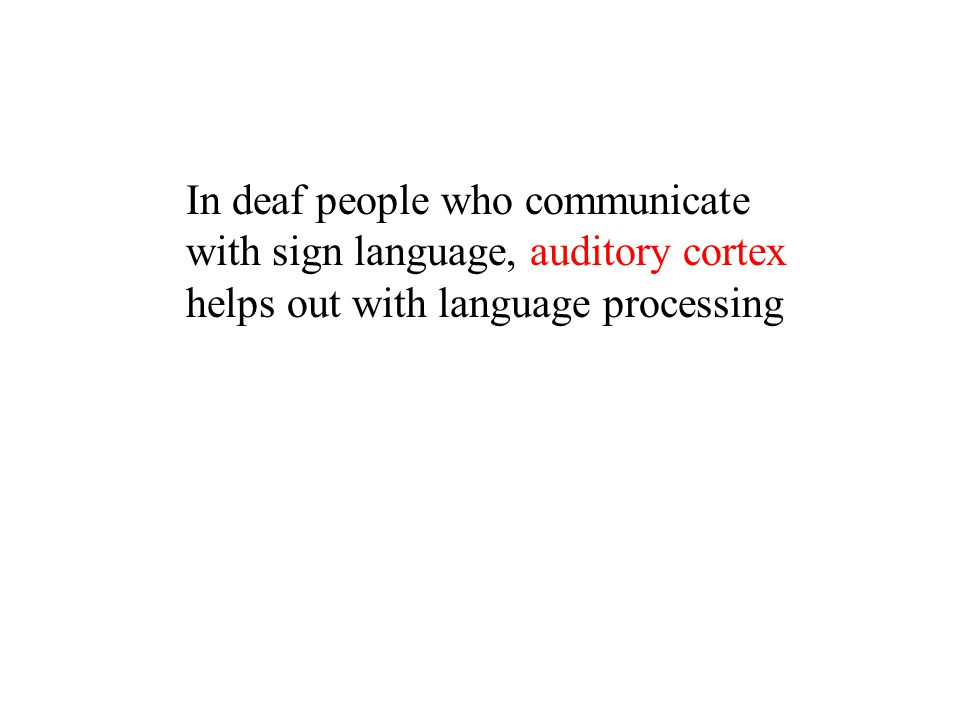 In deaf people who communicate with sign language, auditory cortex helps out with language processing