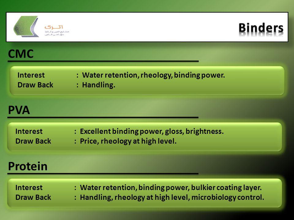 CMC Interest: Water retention, rheology, binding power. Draw Back: Handling. PVA Interest: Excellent binding power, gloss, brightness. Draw Back: Pric