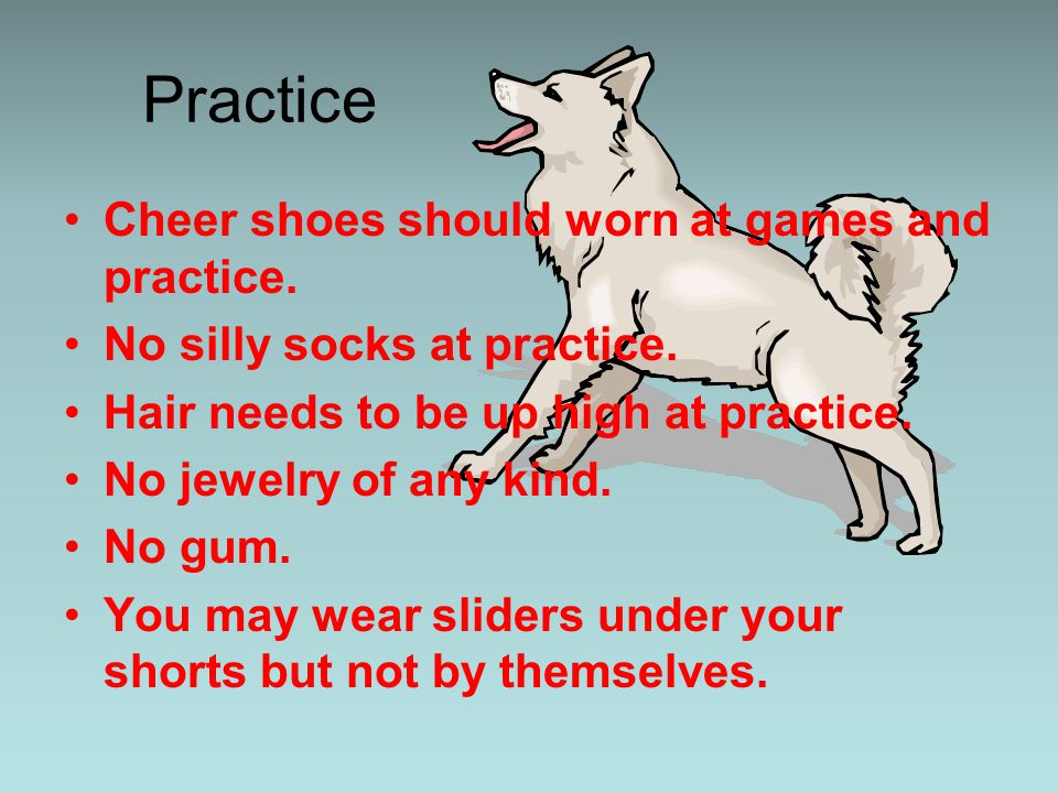 Practice Cheer shoes should worn at games and practice.