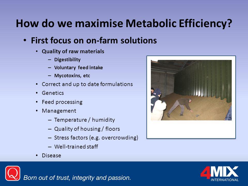 How do we maximise Metabolic Efficiency.