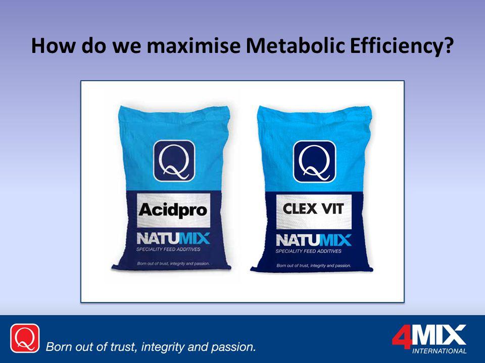 How do we maximise Metabolic Efficiency?