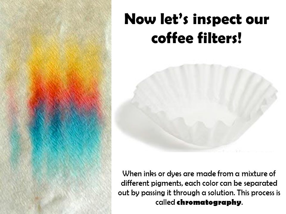 Now let's inspect our coffee filters.