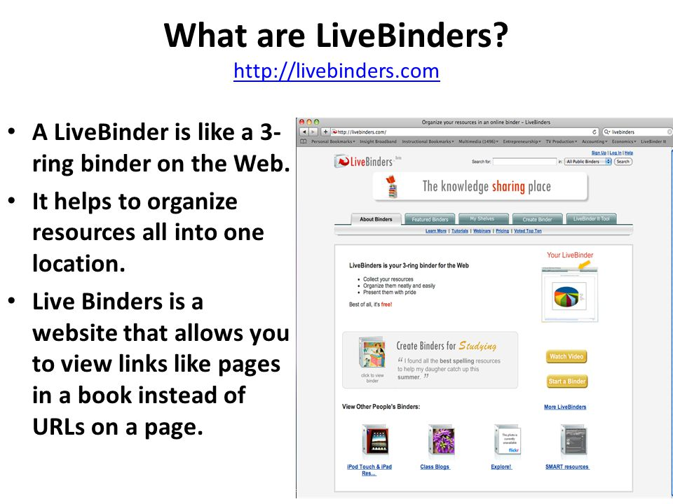 What types of Information can I add to a LiveBinder.