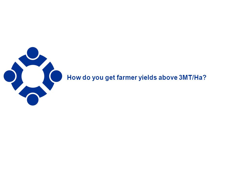 13 How do you get farmer yields above 3MT/Ha?