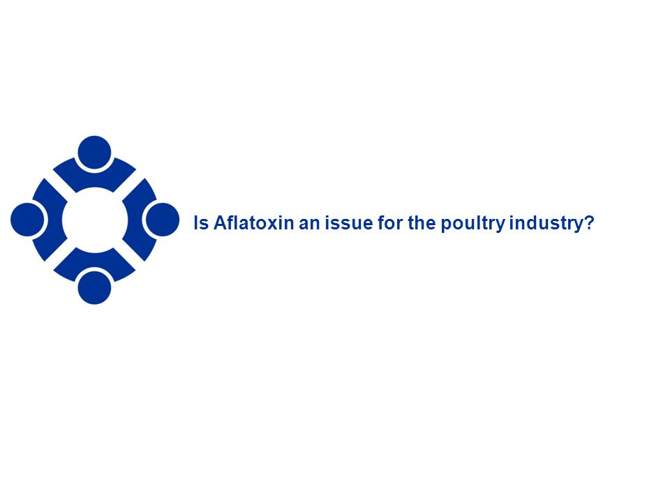 7 Is Aflatoxin an issue for the poultry industry?
