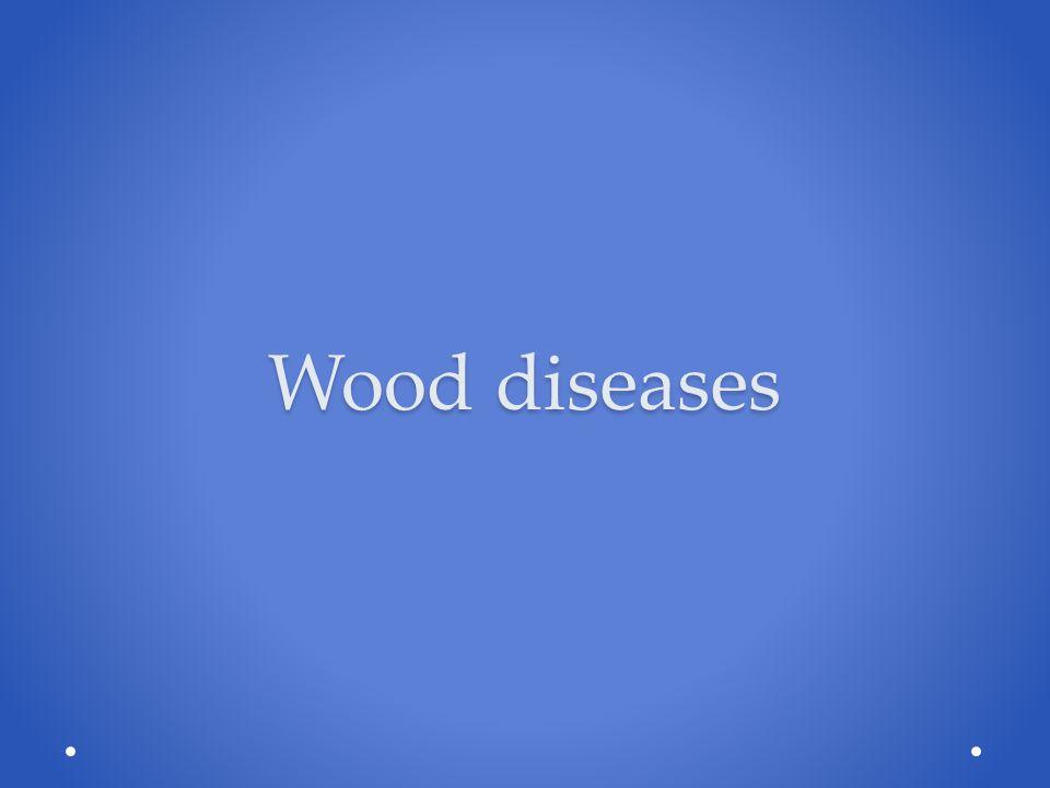 DISEASES OCCUR WHEN: CUTS FUNGI MISTLE-TOE ; A PARASITIC PLANT LARVAE ENVIRONMENTAL FACTORS