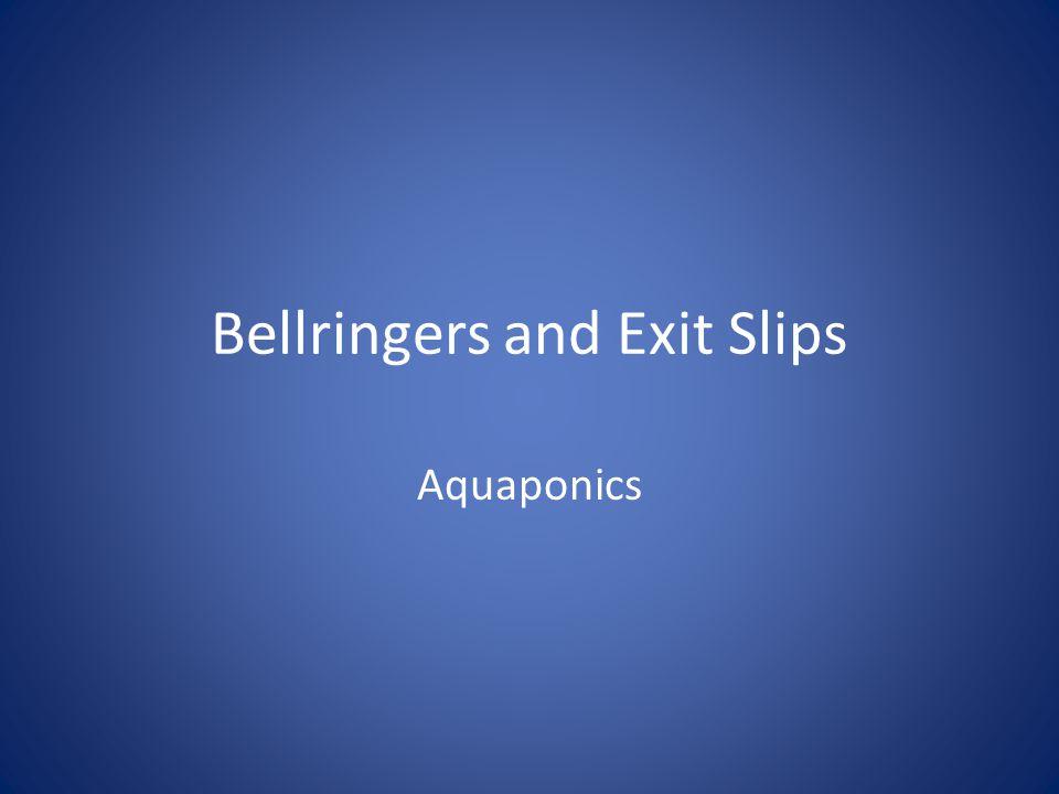 Agenda BR Intro to Aquaponics Lecture (part 2) Nitrogen Cycle Lecture Questions ES