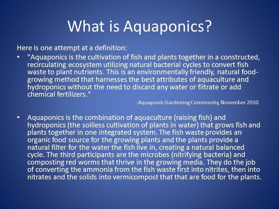The Aquaponics cycle