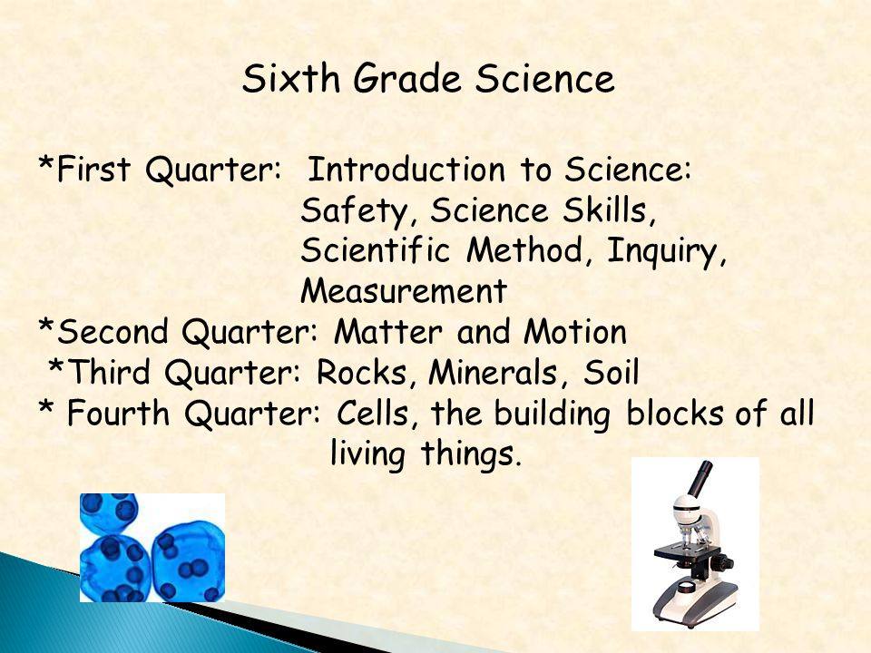 Sixth Grade Science *First Quarter: Introduction to Science: Safety, Science Skills, Scientific Method, Inquiry, Measurement *Second Quarter: Matter and Motion *Third Quarter: Rocks, Minerals, Soil * Fourth Quarter: Cells, the building blocks of all living things.