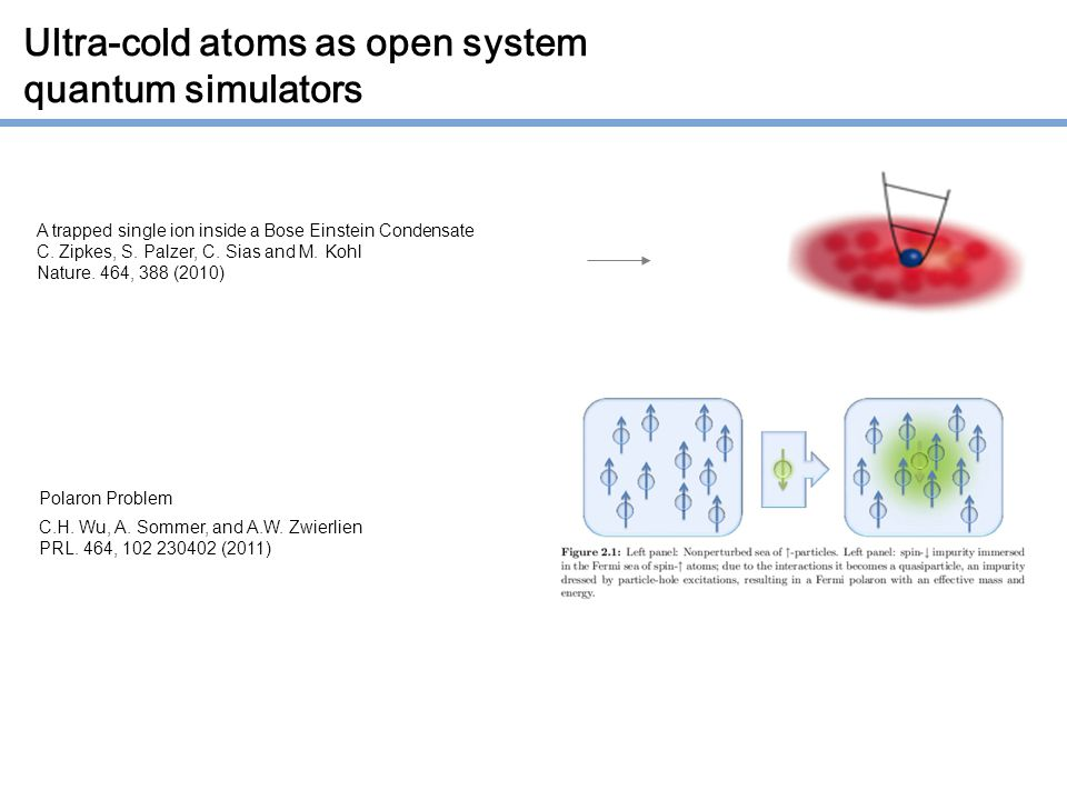Ultra-cold atoms as open system quantum simulators A trapped single ion inside a Bose Einstein Condensate C.