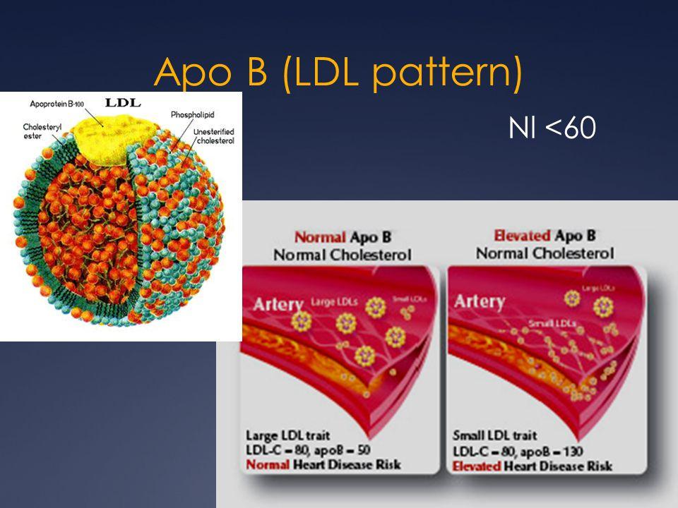 Apo B (LDL pattern) Nl <60