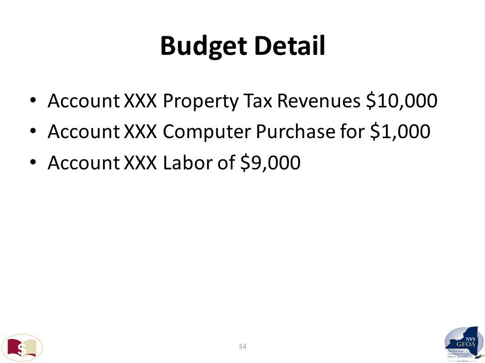 Budget Detail Account XXX Property Tax Revenues $10,000 Account XXX Computer Purchase for $1,000 Account XXX Labor of $9,000 34