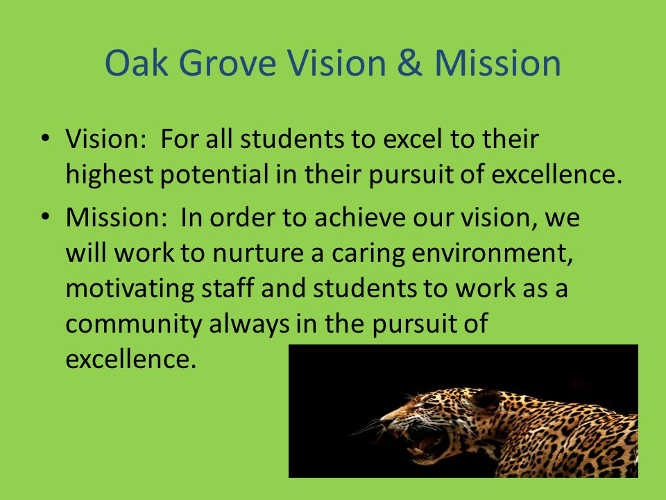 Oak Grove Vision & Mission Vision: For all students to excel to their highest potential in their pursuit of excellence.