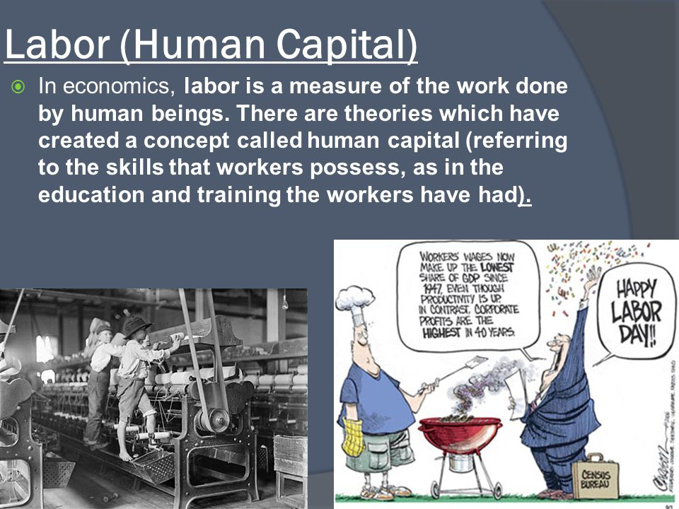 Labor (Human Capital)  In economics, labor is a measure of the work done by human beings. There are theories which have created a concept called huma