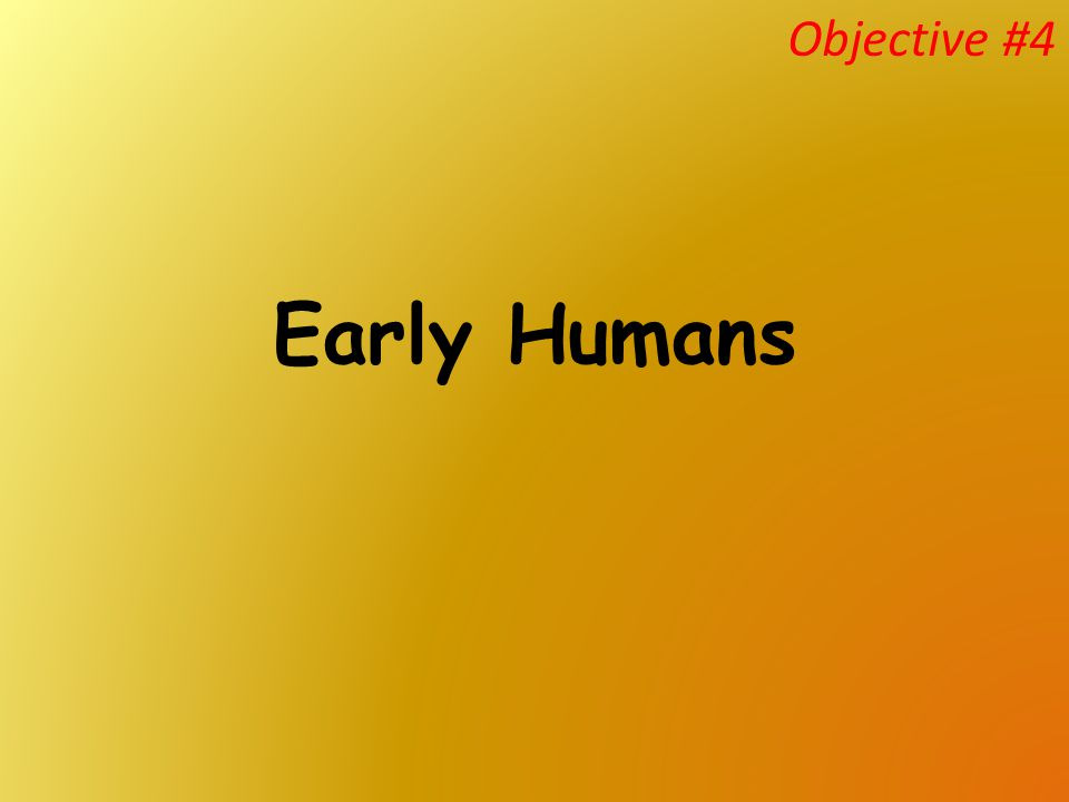 Early Humans Objective #4