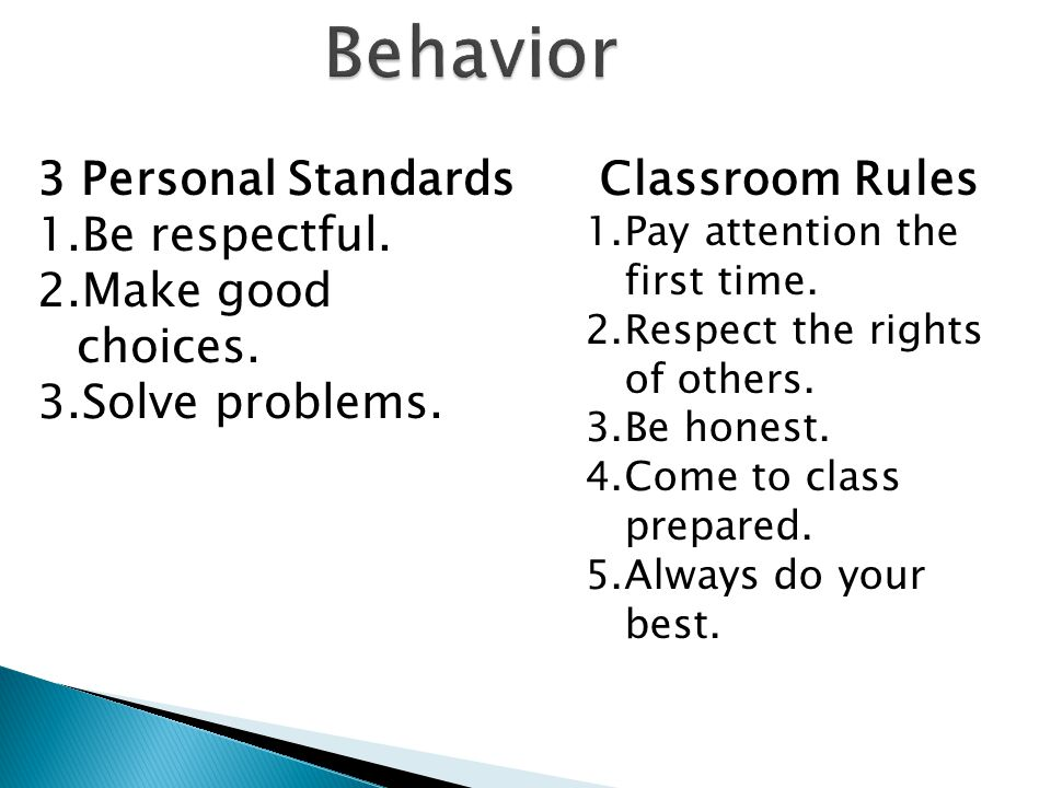 Behavior 3 Personal Standards 1.Be respectful. 2.Make good choices.