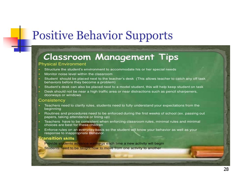 Positive Behavior Supports 28
