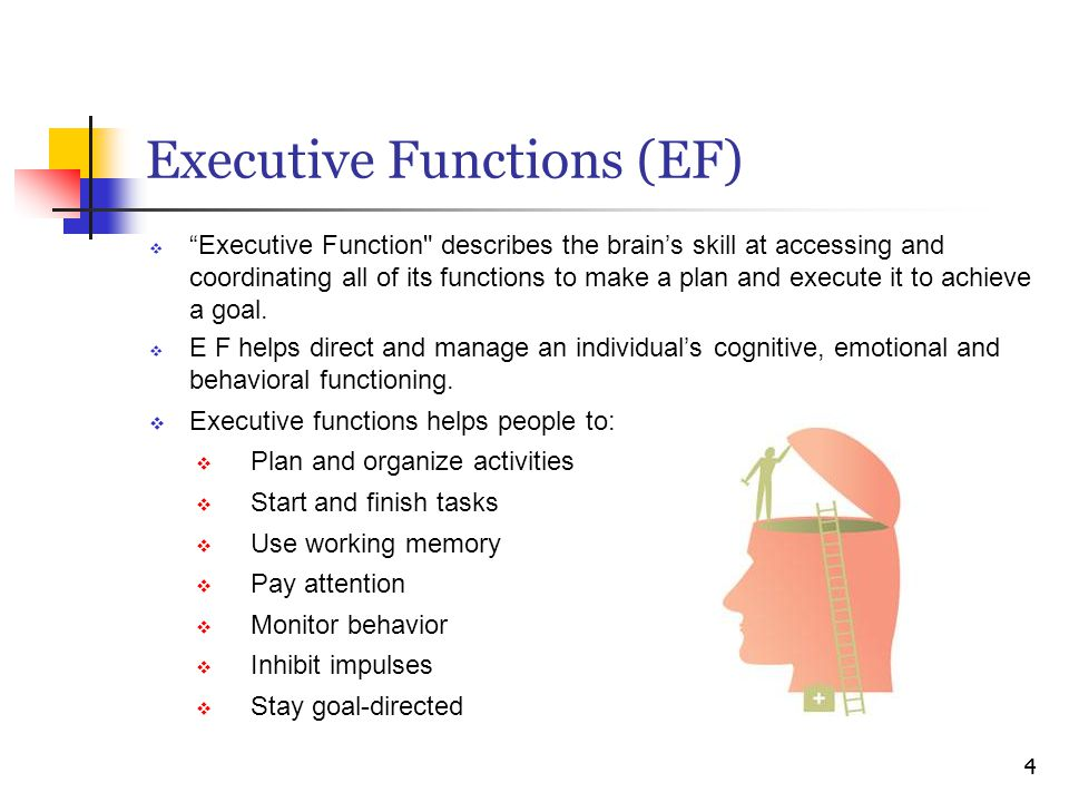 "Executive Functions (EF)  ""Executive Function"