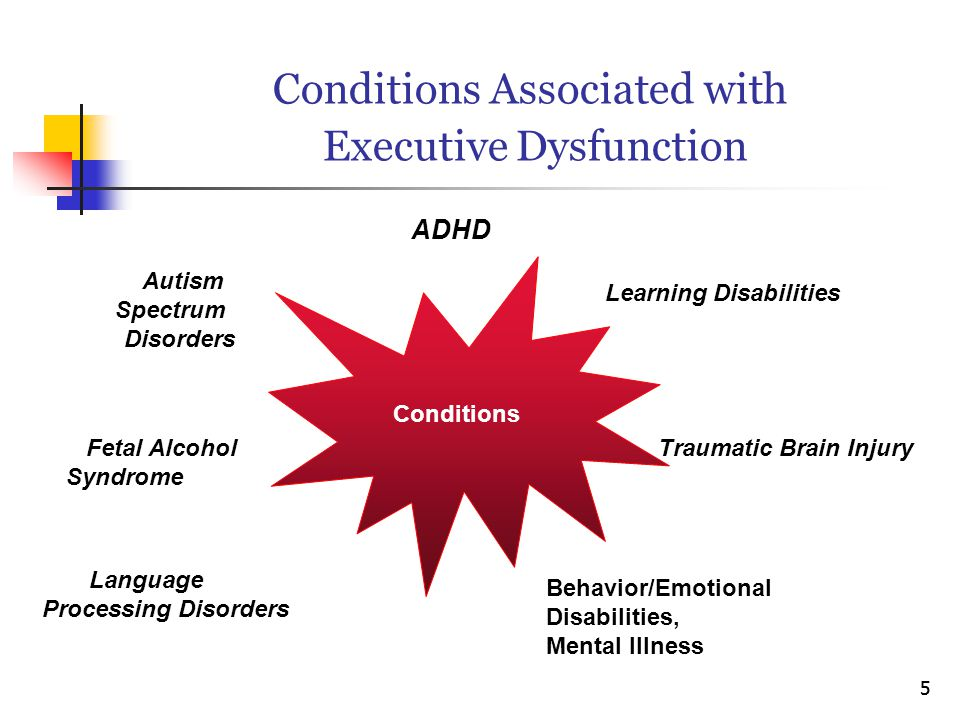Conditions Associated with Executive Dysfunction ADHD Learning Disabilities Traumatic Brain Injury Behavior/Emotional Disabilities, Mental Illness Lan