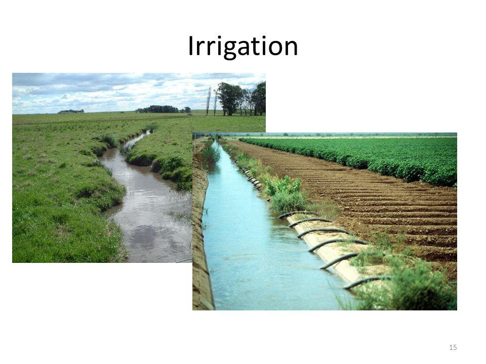 Irrigation 15