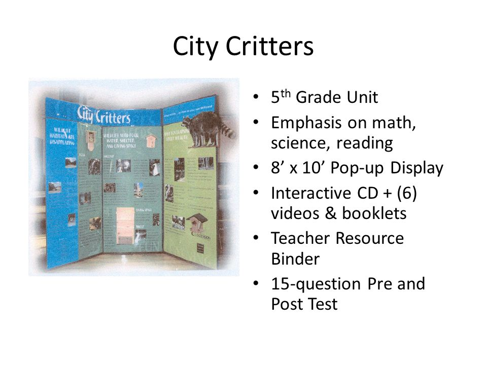 City Critters 5 th Grade Unit Emphasis on math, science, reading 8' x 10' Pop-up Display Interactive CD + (6) videos & booklets Teacher Resource Binde
