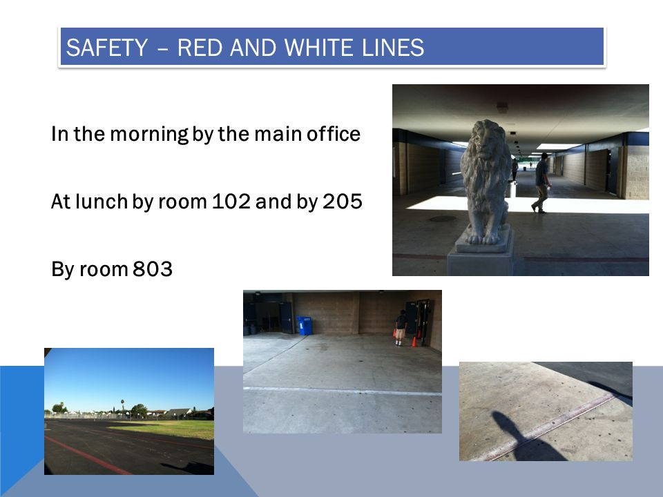 SAFETY – RED AND WHITE LINES In the morning by the main office At lunch by room 102 and by 205 By room 803