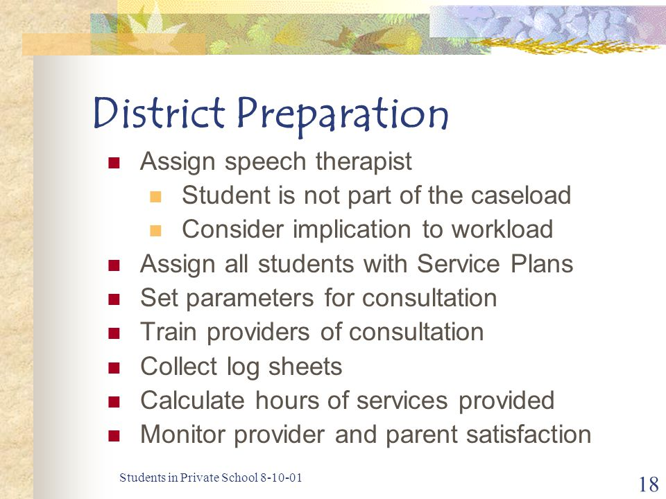 Students in Private School 8-10-01 18 District Preparation Assign speech therapist Student is not part of the caseload Consider implication to workload Assign all students with Service Plans Set parameters for consultation Train providers of consultation Collect log sheets Calculate hours of services provided Monitor provider and parent satisfaction